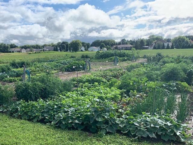 Antigo Community Garden 3